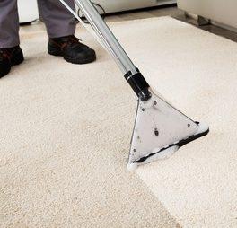 Smital Gebäudereinigung - Teppichreinigung